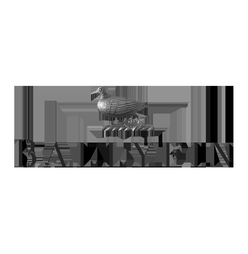 Rivolta Carmignani Home nei migliori hotel del mondo Ballyfin